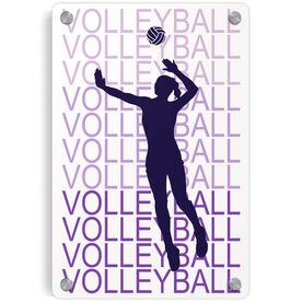 Volleyball Metal Wall Art Panel - Fade