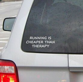 Cheaper Than Therapy Vinyl RUNNERDecal